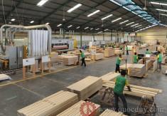 Vietnam wood industry sees bright future as orders increase