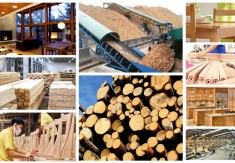 WOODWORKING INDUSTRY IN 2017: TO OVERCOME CHALLENGES, TO GET GROWTH